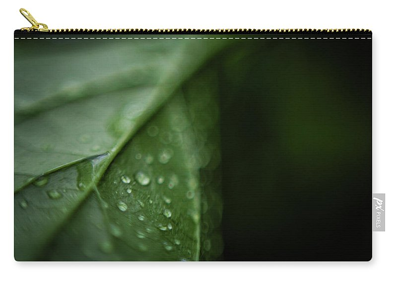 Leaf Carry-all Pouch featuring the photograph Rain On A Leaf by Matt Hampel