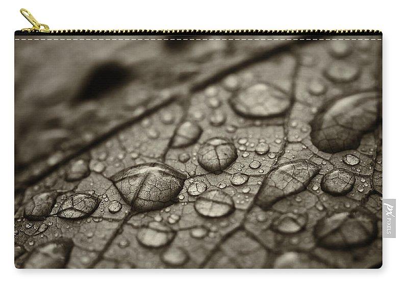 Rain. Raindrops Carry-all Pouch featuring the photograph Raindrops #1 by Bethany Dhunjisha