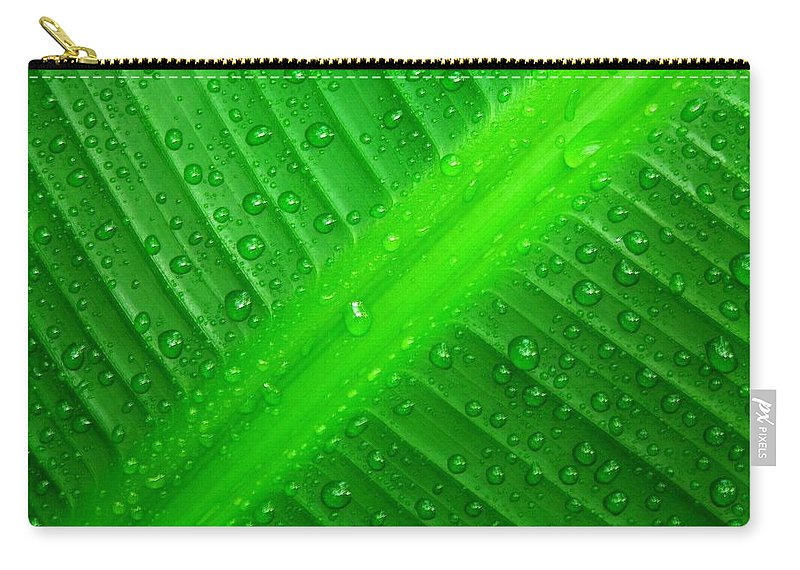 Nature Carry-all Pouch featuring the photograph Raindrops ... by Juergen Weiss