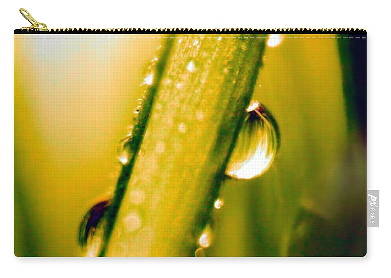 Raindrops On A Blade Of Grass Carry-all Pouch featuring the photograph Raindrops On A Blade Of Grass by Mariola Bitner