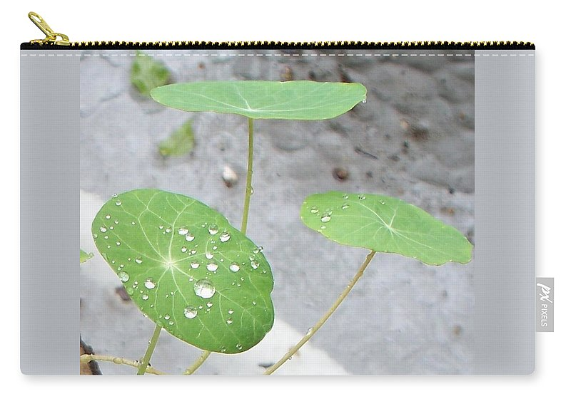 Floral Carry-all Pouch featuring the painting Raindrops On A Nasturtium Leaf by Eric Schiabor