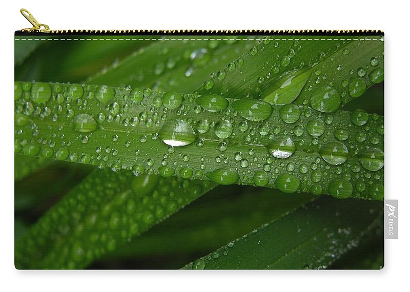 Rain Carry-all Pouch featuring the photograph Raindrops On Green Leaves by Carol Groenen