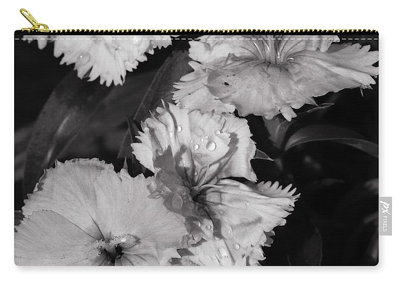 Flowers Flower Raindrops Petals Leaf Blooms Horticulture Monochrome Light Shade Growing Garden Carry-all Pouch featuring the photograph Raindrops On Petals Monochrome by Jeff Townsend