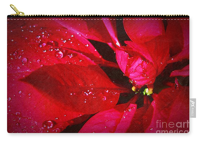 Raindrops On Red Poinsettia Carry-all Pouch featuring the photograph Raindrops On Red Poinsettia by Mariola Bitner