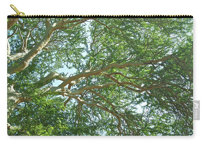 Canopy Carry-all Pouch featuring the photograph Rainforest Canopy by Michael Peychich