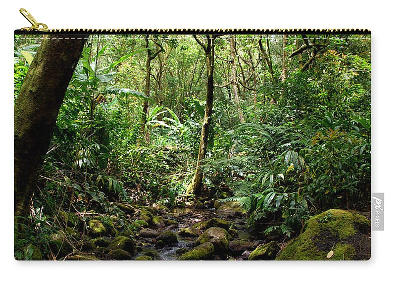 Manoa Carry-all Pouch featuring the photograph Rainforest Stream by Kevin Smith