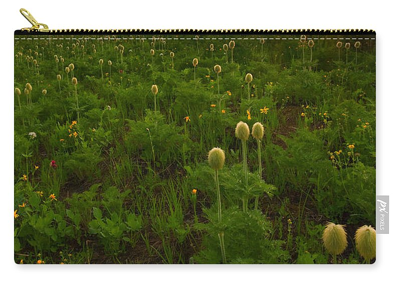 Meadow Carry-all Pouch featuring the photograph Rainier Wildflower Light by Mike Dawson