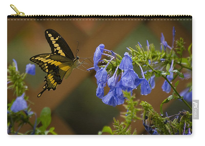 Butterfly Carry-all Pouch featuring the photograph Rainy Day Lunch by Dennis Reagan