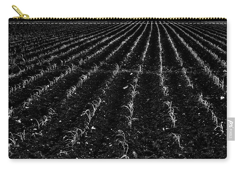 Sugarcane Carry-all Pouch featuring the photograph Raising Cane by Roberto Aloi