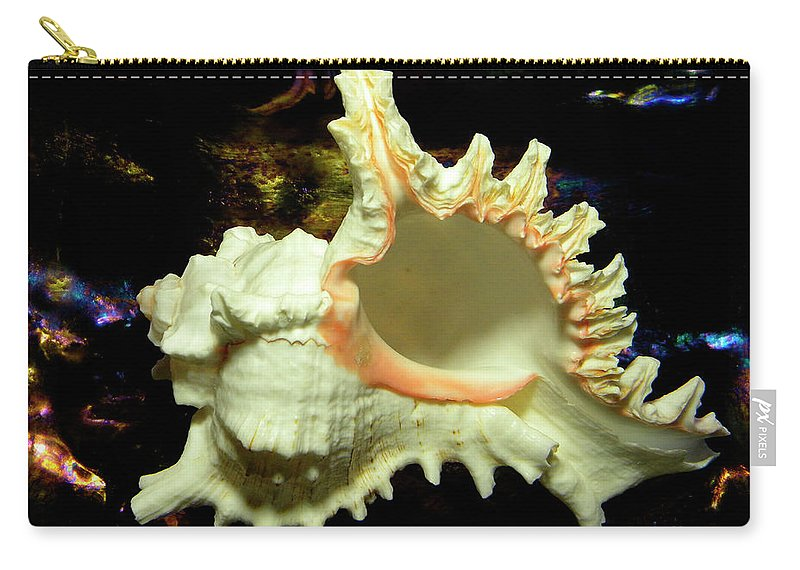 Frank Wilson Carry-all Pouch featuring the photograph Rams Horn Seashell by Frank Wilson