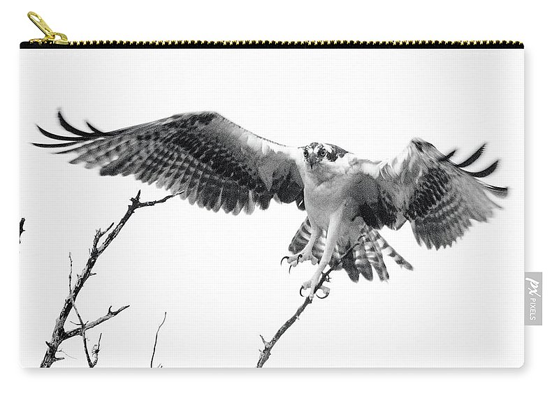 Raptor Carry-all Pouch featuring the photograph Raptor Elite by Lamarre Labadie