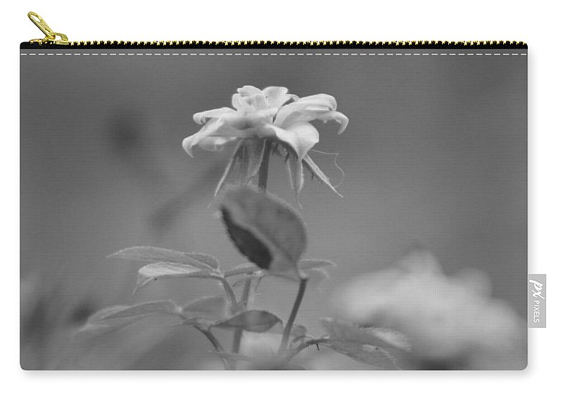 Miniature Rose Carry-all Pouch featuring the photograph Reach Black and White Photograph of a Miniature Rose by Colleen Cornelius