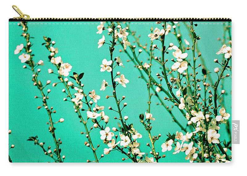 Flowers Carry-all Pouch featuring the photograph Reach - Botanical Wall Art by Melanie Alexandra Price