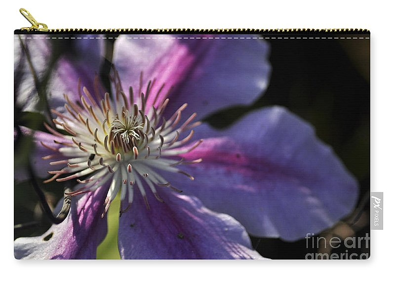 Clay Carry-all Pouch featuring the photograph Reach For The Sun by Clayton Bruster