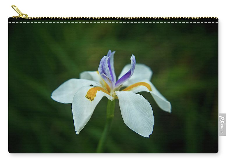 Reaching Carry-all Pouch featuring the photograph Reaching Iris by Douglas Barnett