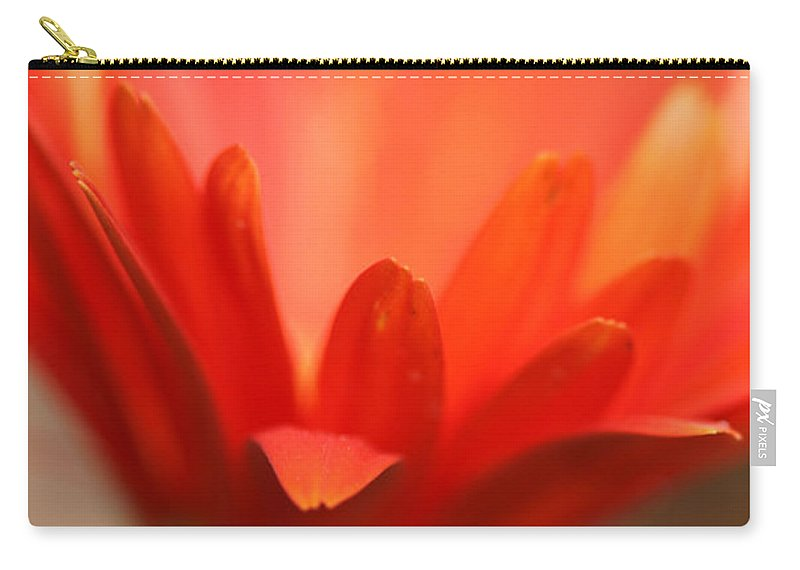 Daisy Plant Flower Orange Green Growing Photography Photograph Art Digital Carry-all Pouch featuring the photograph Reaching Out by Shari Jardina