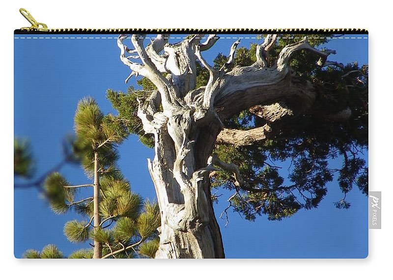 Tree Carry-all Pouch featuring the photograph Reaching Up by Charleen Treasures