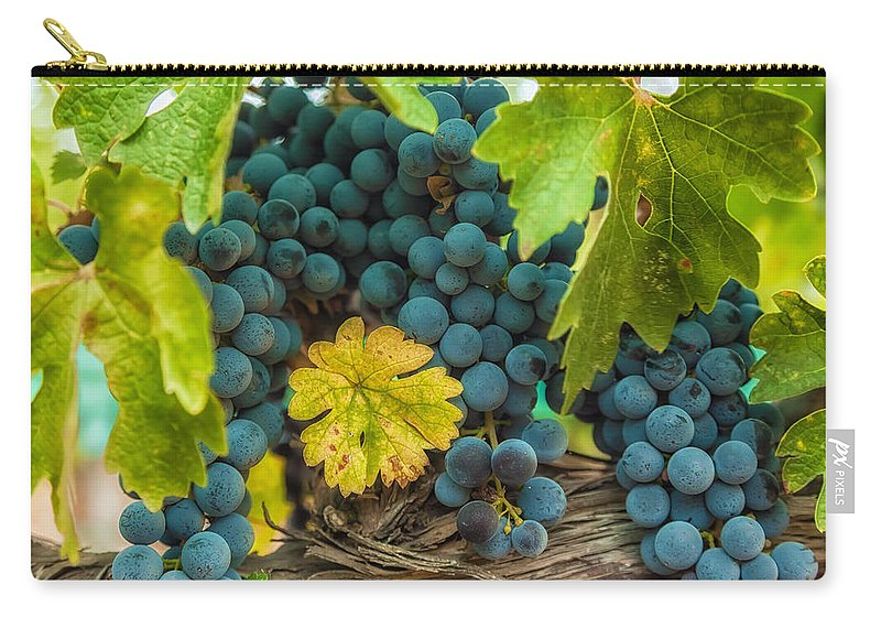 Abstract Carry-all Pouch featuring the photograph Ready For Harvest by Jonathan Nguyen