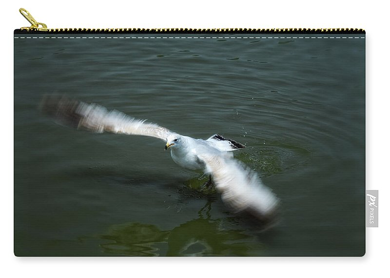 Seagull Carry-all Pouch featuring the photograph Ready For Takeoff by Donna Blackhall