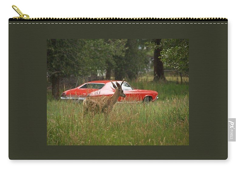 Nature Carry-all Pouch featuring the photograph Ready, Set, Go by Wilma Holland