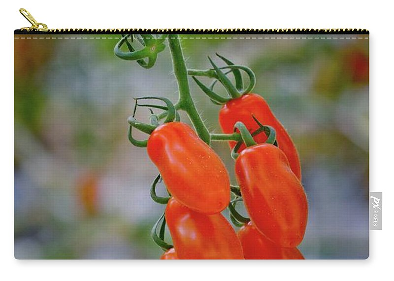 Tomatoes Carry-all Pouch featuring the photograph Ready To Eat by Linda Unger