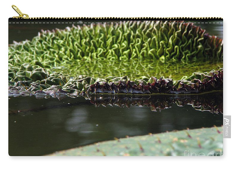 Lillypad Carry-all Pouch featuring the photograph Ready To Spread by Amanda Barcon