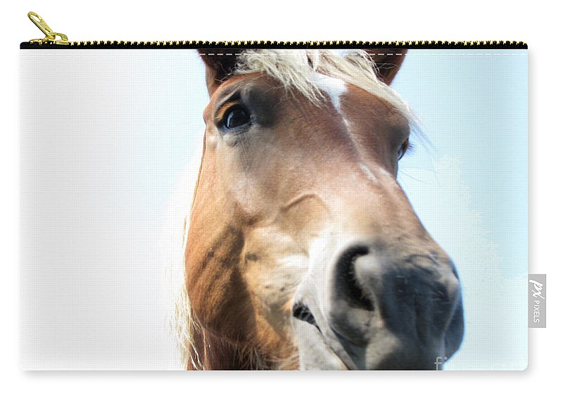Horse Carry-all Pouch featuring the photograph Really by Amanda Barcon