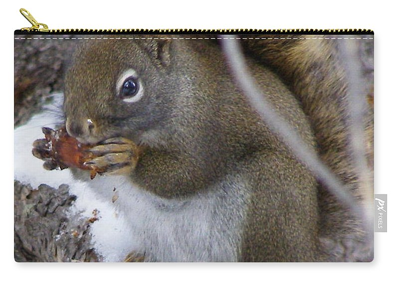 Squirrel Carry-all Pouch featuring the photograph Reaping What We Sow by DeeLon Merritt