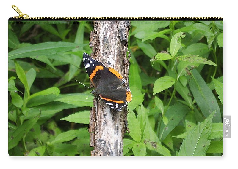 Red Admiral Butterfly Images Red Admiral Butterfly Photograph Prints American Butterflies Entomology Forest Ecosystem Forest Habitat Nature Biodiversity Butterfly Species Orange And Black Butterfly Images Pictures Carry-all Pouch featuring the photograph Red Admiral Butterfly by Joshua Bales