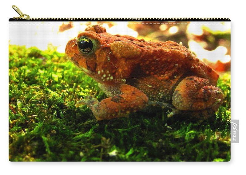 Red Phase American Toad Images Red American Toad Photo Prints Maryland Amphibian Images Nature Forest Ecosystem Biodiversity Red Toad On Moss Images Colorful Critter Prints Carry-all Pouch featuring the photograph Red American Toad by Joshua Bales