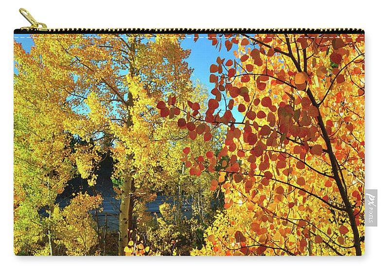 Colorado Carry-all Pouch featuring the photograph Red And Golden Aspens In Dillon Co by Ray Mathis