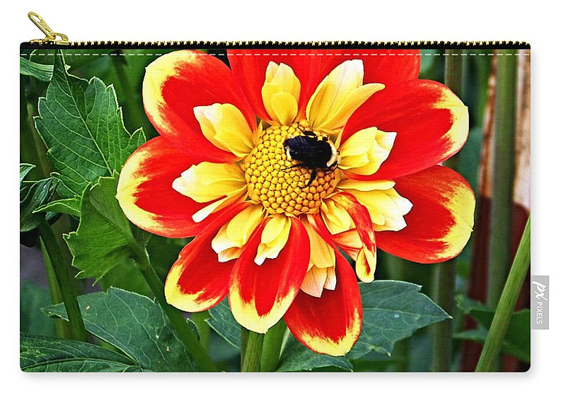 Flower Carry-all Pouch featuring the photograph Red And Yellow Flower With Bee by Anthony Jones