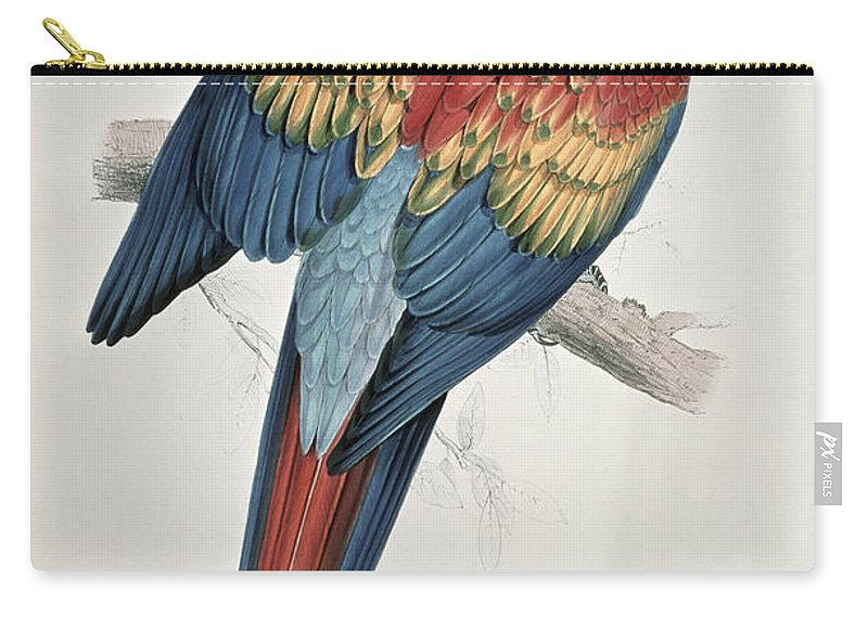 Red Carry-all Pouch featuring the painting Red And Yellow Macaw by Edward Lear