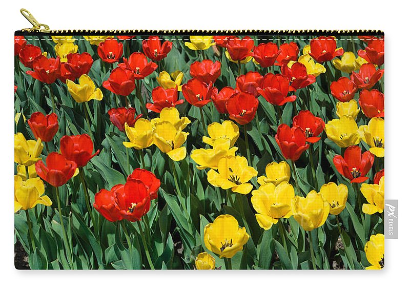 Red Carry-all Pouch featuring the photograph Red And Yellow Tulips Naperville Illinois by Michael Bessler