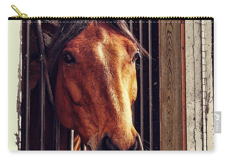 Horse Carry-all Pouch featuring the photograph Red Bay by JAMART Photography