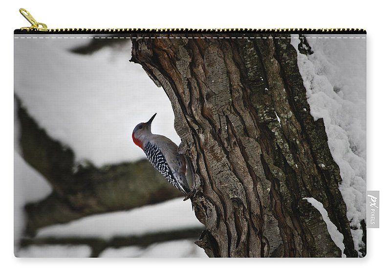 Woodpecker Carry-all Pouch featuring the photograph Red Bellied Woodpecker No 2 by Teresa Mucha