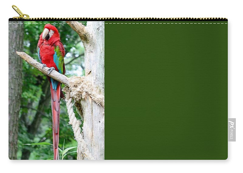 Bird Carry-all Pouch featuring the photograph Red Bird And Pink Flowers by Kim Bemis