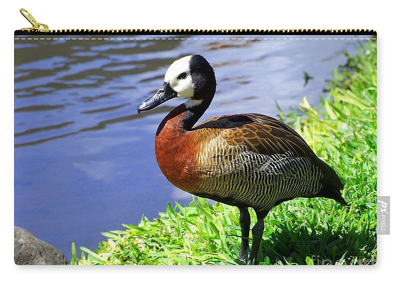 Red Carry-all Pouch featuring the photograph Red Breasted Wood Duck by Mary Deal