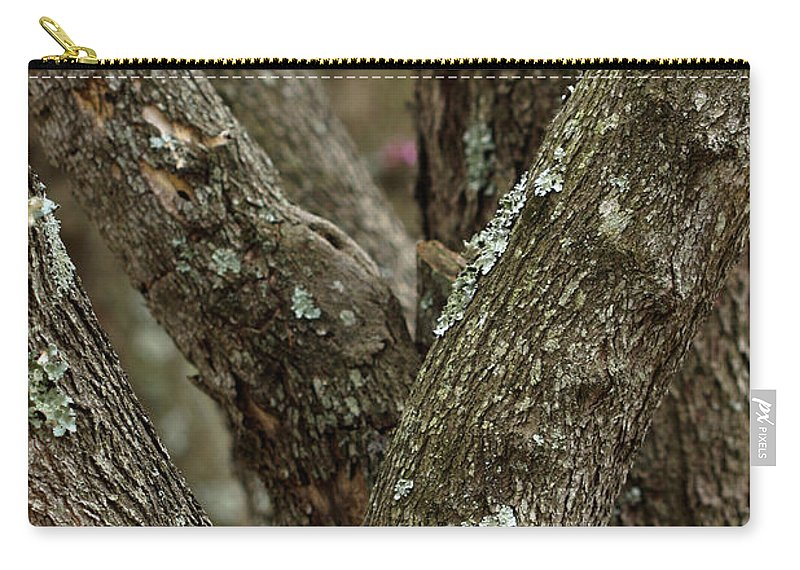 Red Bud Trees Carry-all Pouch featuring the photograph Red Bud Row by Kim Henderson