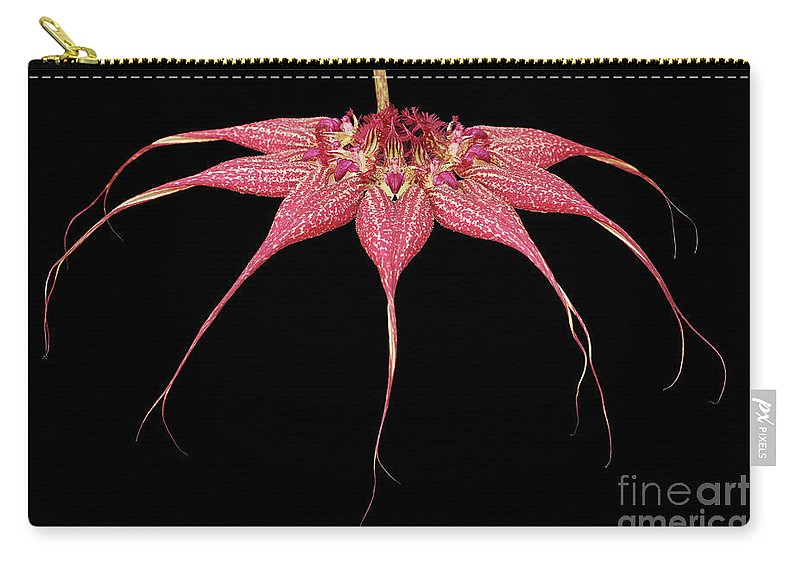 Orchid Carry-all Pouch featuring the photograph Red Chimney #2 by Judy Whitton
