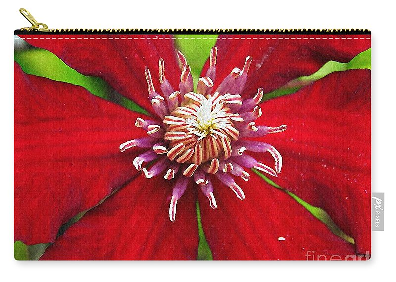Clematis Carry-all Pouch featuring the photograph Red Clematis by Sarah Loft