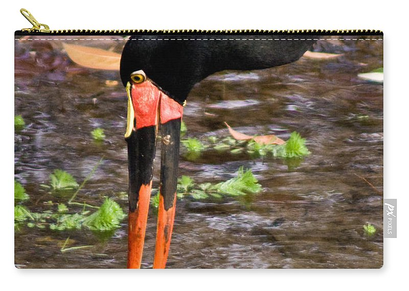 Red Carry-all Pouch featuring the photograph Red-crowned Crane by Douglas Barnett