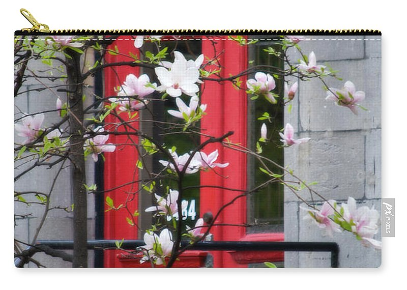 Red Door Carry-all Pouch featuring the photograph Red Door by Lisa Knechtel