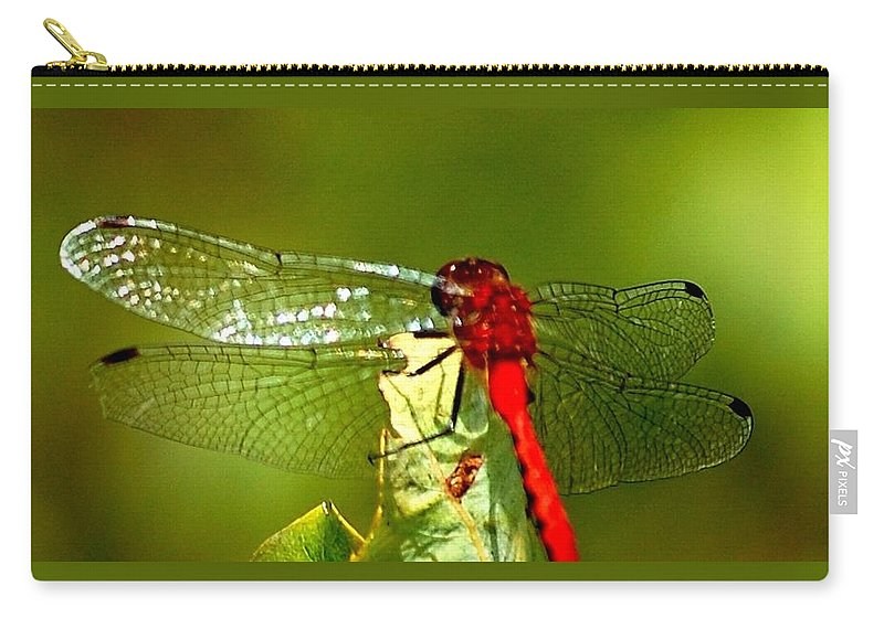 Digital Photograph Carry-all Pouch featuring the photograph Red Dragon 2 by David Lane