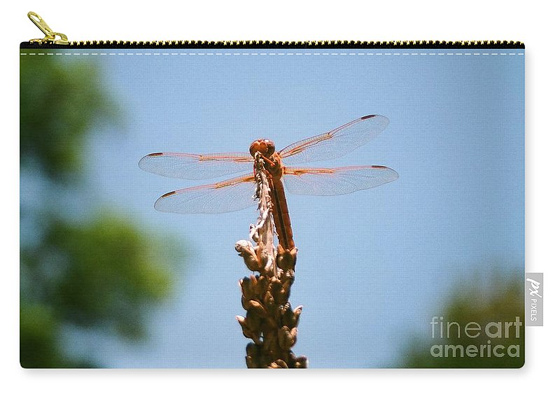Dragonfly Carry-all Pouch featuring the photograph Red Dragonfly by Dean Triolo