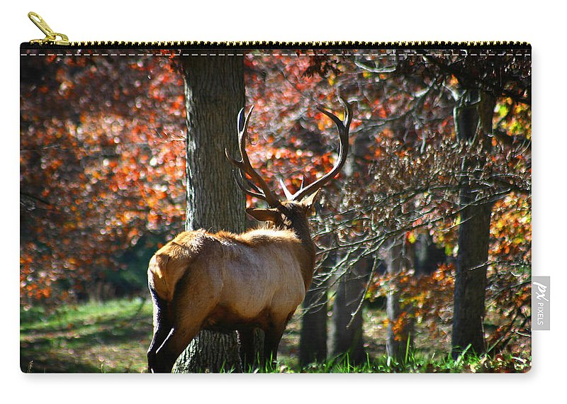 Elk Carry-all Pouch featuring the photograph Red Elk by Anthony Jones