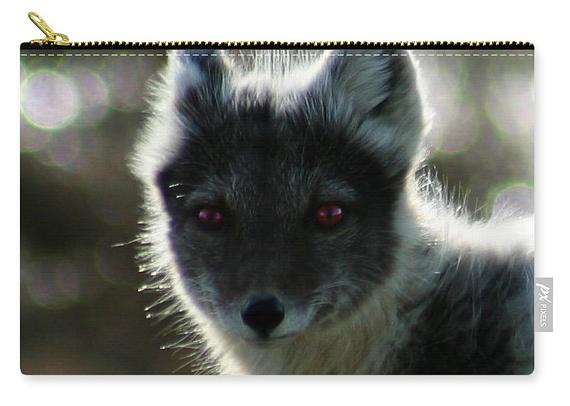 Arctic Fox Carry-all Pouch featuring the photograph Red Eyes by Anthony Jones