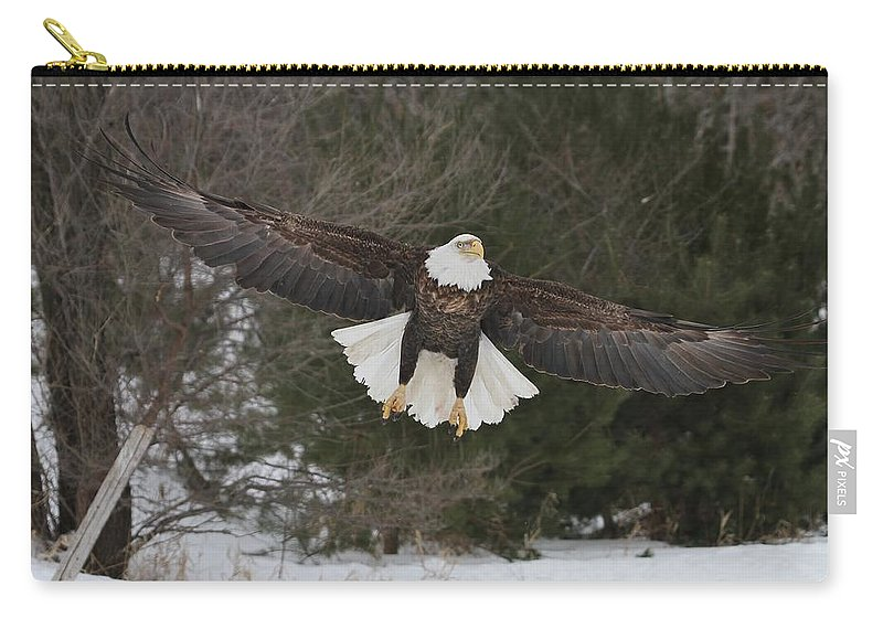 Bald Eagle Carry-all Pouch featuring the photograph Red Feather Lift Off by Teresa McGill