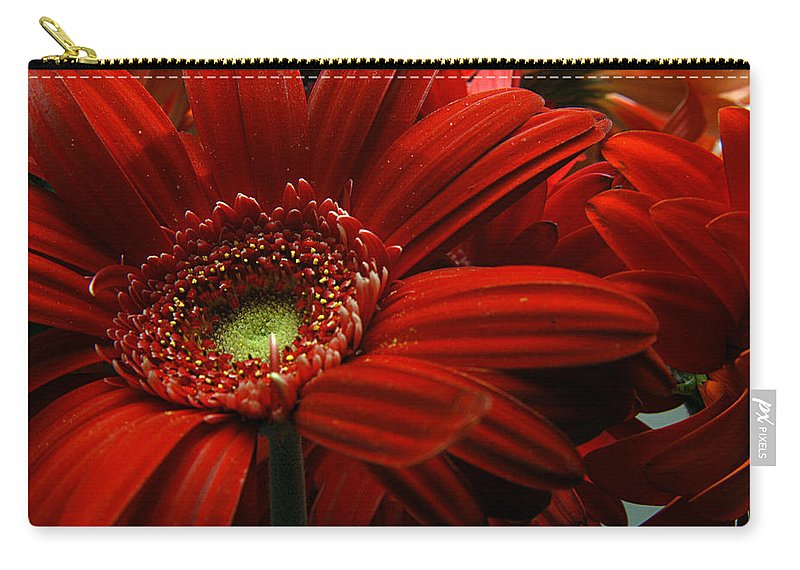 Clay Carry-all Pouch featuring the photograph Red Floral by Clayton Bruster