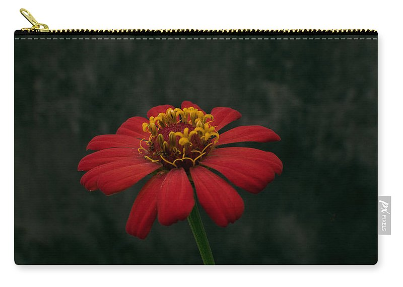 Orange Carry-all Pouch featuring the photograph Red Flower 5 by Totto Ponce